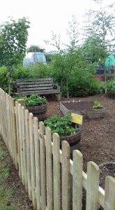 Uppingham community garden at Leicester road allotments
