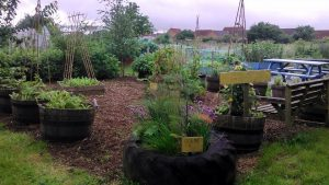 Leicester Rd Community Garden