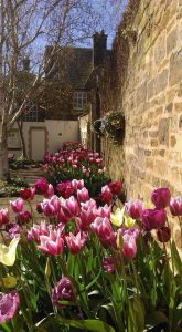 Springtime in Uppingham