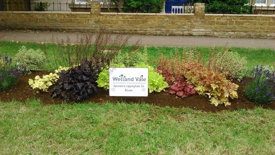Ayston Rd sponsored by Welland Vale